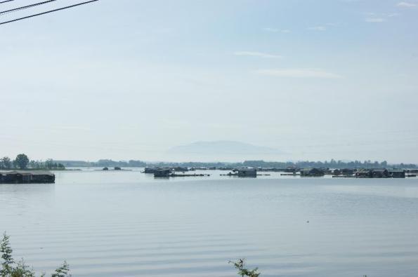 thả cá bè trên sông La Ngà