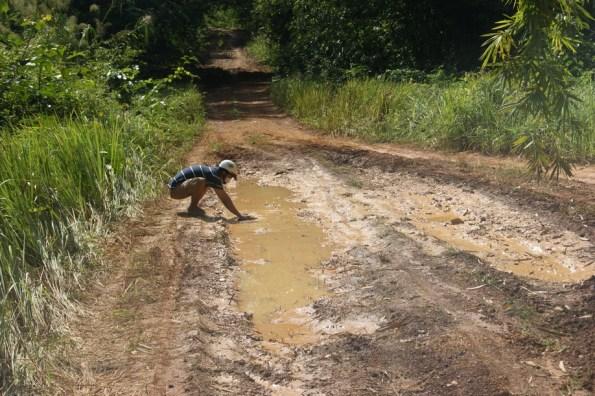 Đường lầy lội thấty sợ